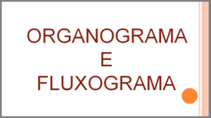 Organograma e fluxograma